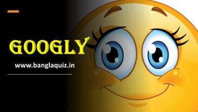 Photo of Googly Quiz – Set 1 । গুগলি ধাঁধা । গুগলি প্রশ্ন ও উত্তর